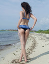 Incredibly attractive skinny brunette Blush  poses in bathing suit and naked at the seaside