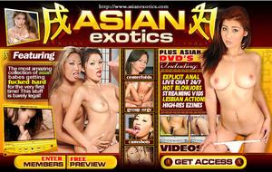 Visit Asian Exotics