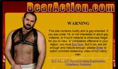 Visit Bear Action