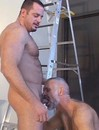 The picture compilation featuring big hairy bears getting and giving gay pleasure