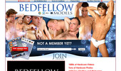 Visit Bed Fellow Models