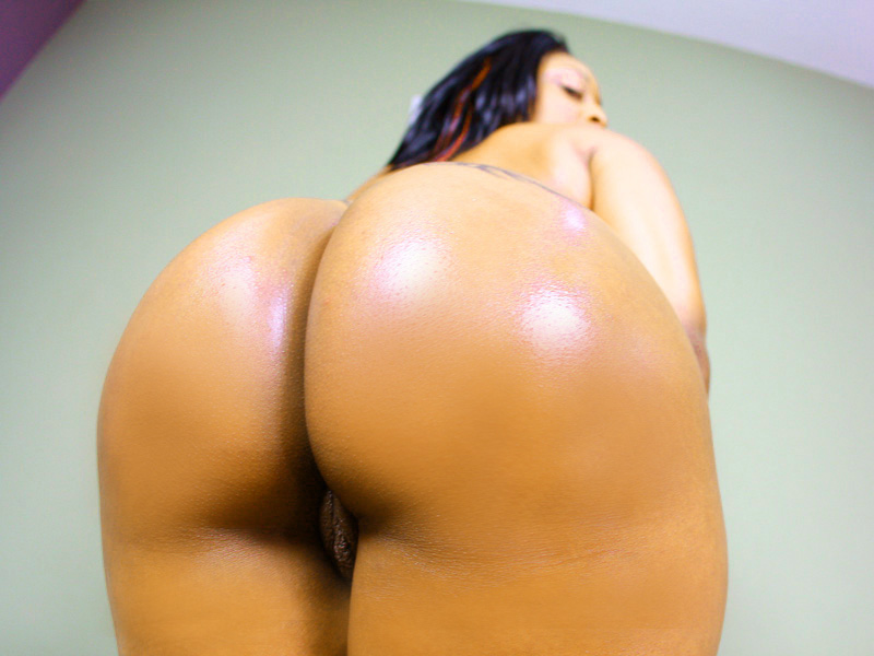 Big tits curvy asses passwords not