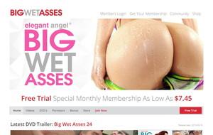 Visit Big Wet Asses