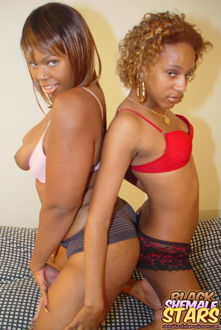 cute ebony shemale gets fuckedhot blooded chocolate girl with