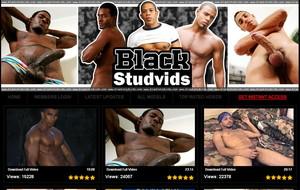 Visit Black Stud Vids