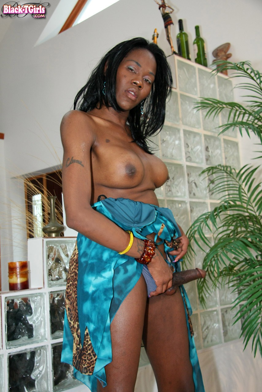 black shemale with meaty dick and juicy ass strips off her dress and
