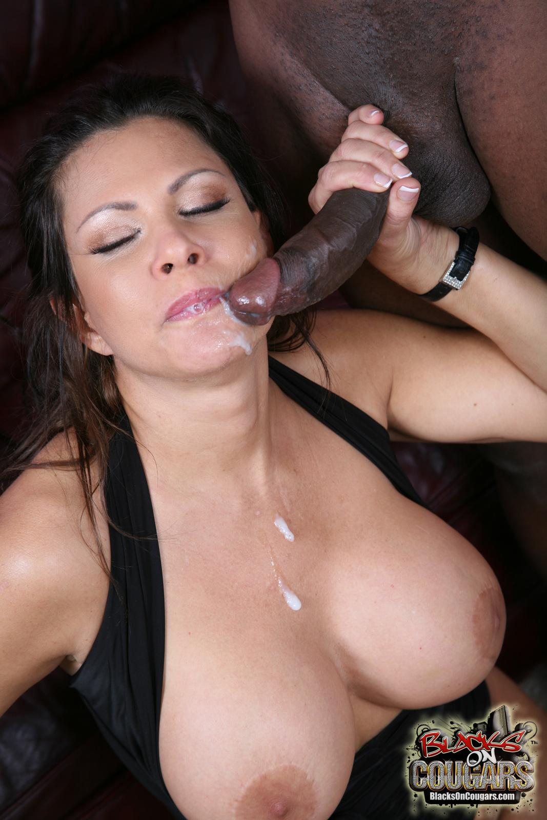 Free sexy cougar porn-3600
