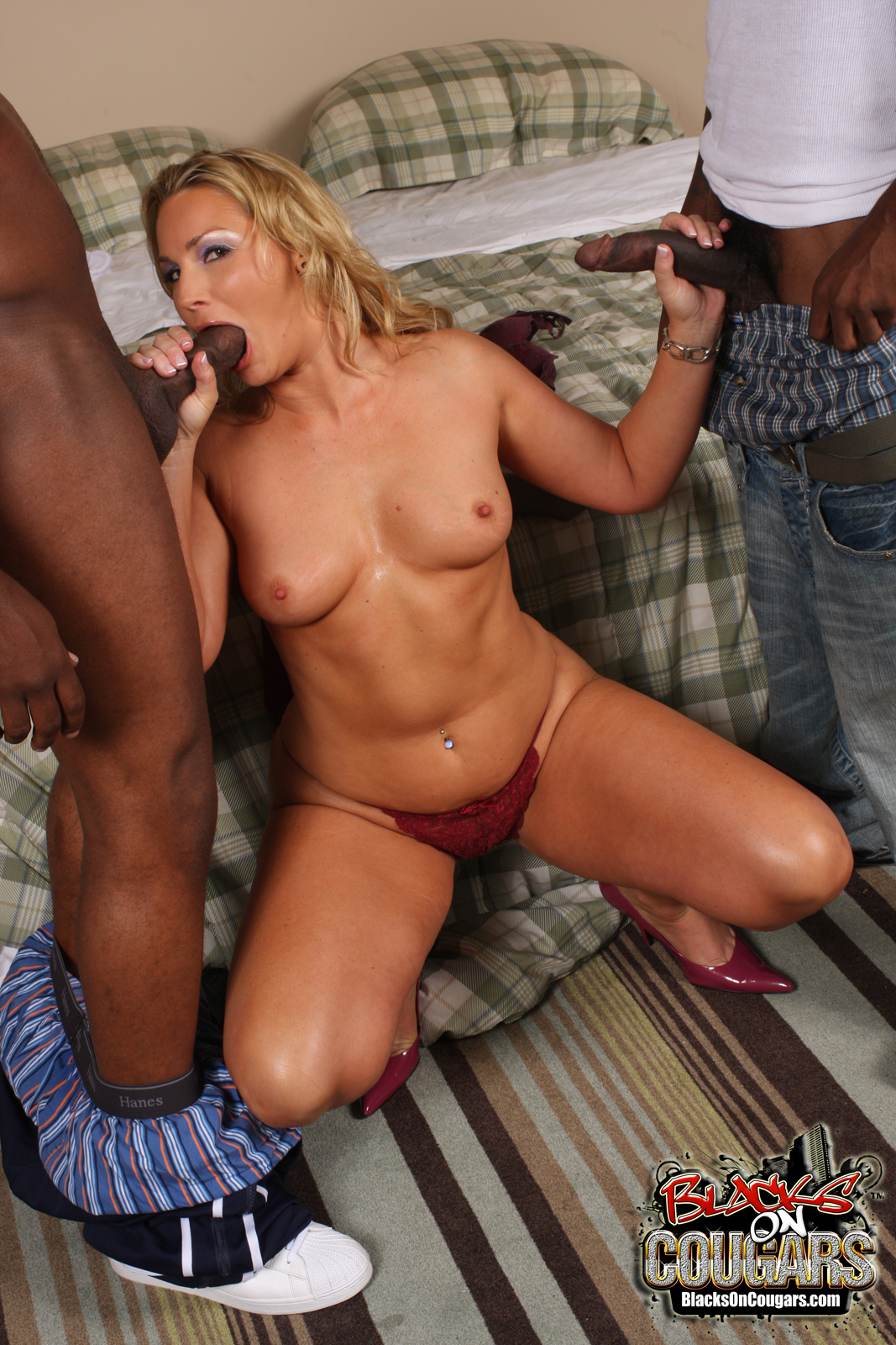 Blacks On Cougars / Flower Tucci