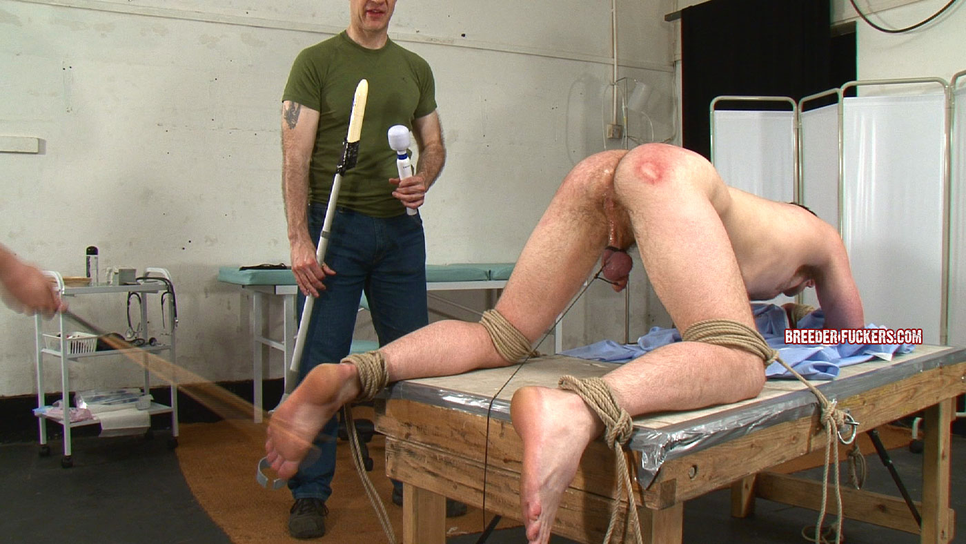 Free gay spanking galleries