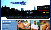 Visit Buzzed Up