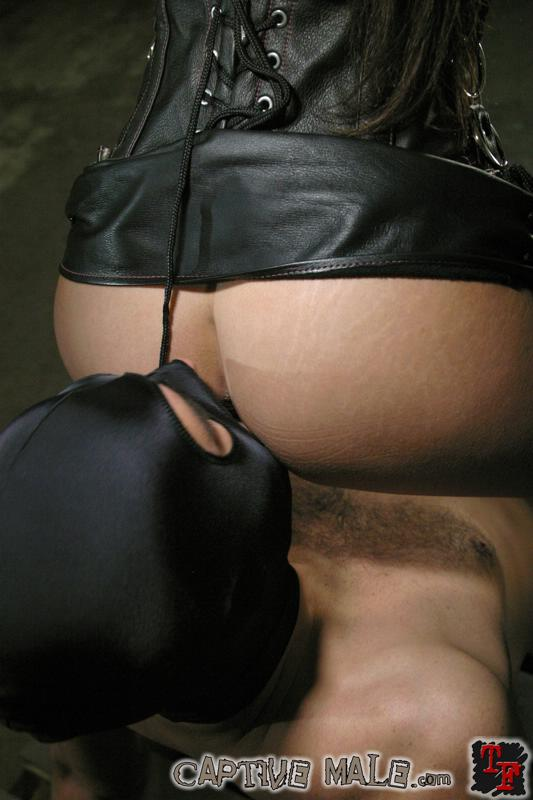 Captive Male / Mistress Shy Love