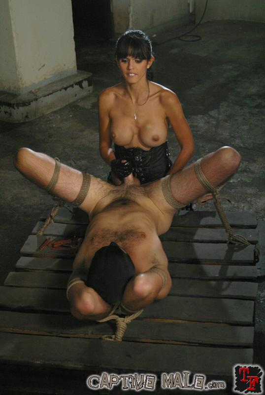 femdom captive male