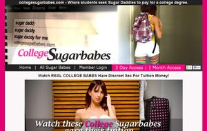Visit College Sugar Babes