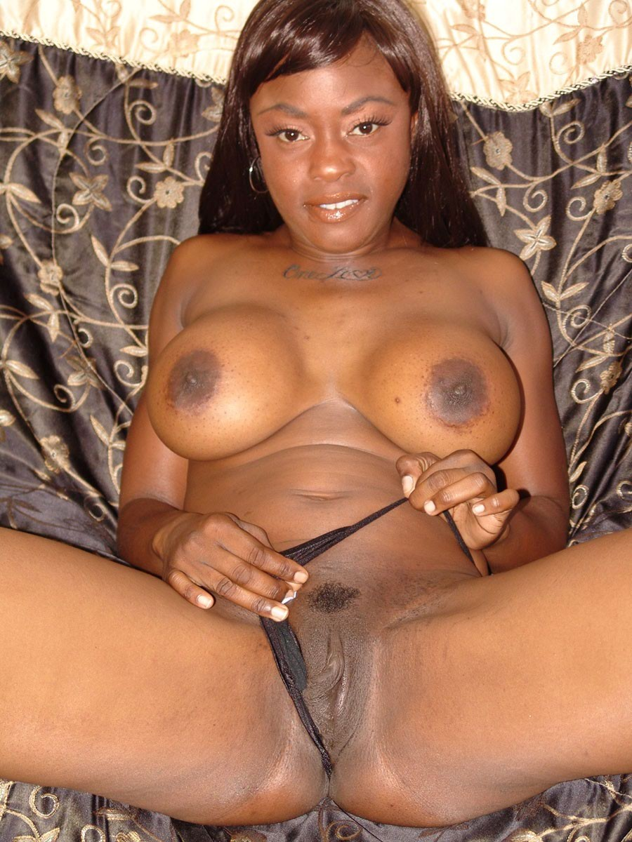 Big Breasted Chocolate Wench Sucks Ivory Cock Then Takes-2517