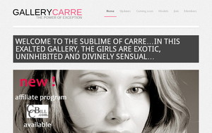 Visit Gallery Carre