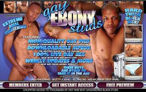 Visit Gay Ebony Studs