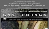 Visit Gay Twinks