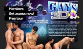 Visit Gays 3D