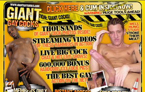 Visit Giant Gay Cocks