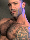 Hairy man Junior Stellano with tattooed arms takes off his jeans and jerks his d