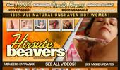 Visit Hirsute Beavers