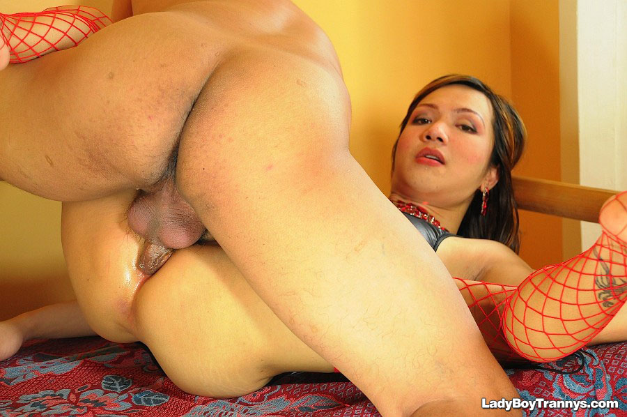 Ladyboy Pimmy Gives Blowjob and Fucked Bareback