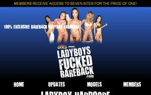 Visit Ladyboys Fucked Bareback