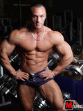 Muscle Gallery / Gallery #6382003