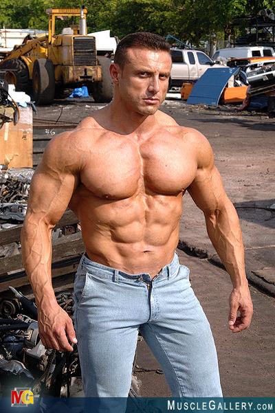 Muscle Gallery / Ilario Rongioletti