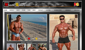 Visit Muscle Gallery