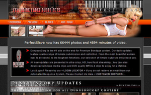 Visit Perfect Slave