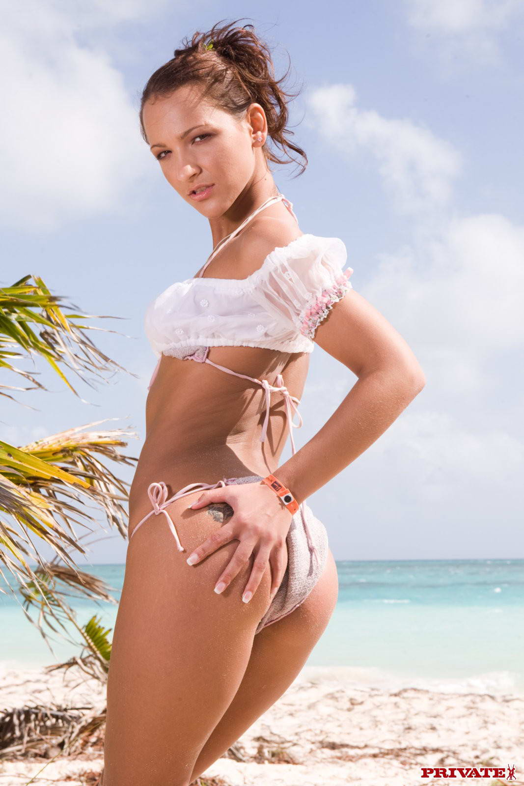 beach-bikini-vagina-sex