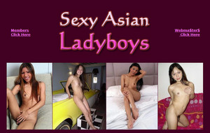 Visit Sexy Asian Ladyboys