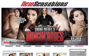 Visit Shane Diesel`s Bangin Babes