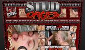 Visit Stud Orgies