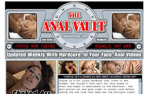 Visit The Anal Vault