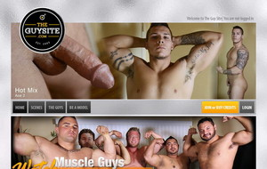 Visit The Guy Site