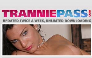 Visit Trannie Pass