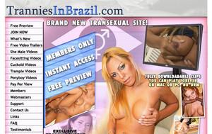 Visit Trannies In Brazil