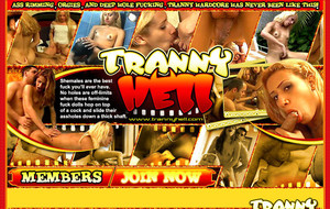 Visit Tranny Hell