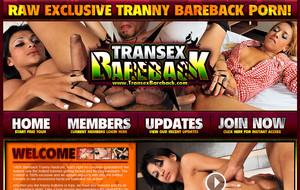 Visit Transex Bareback