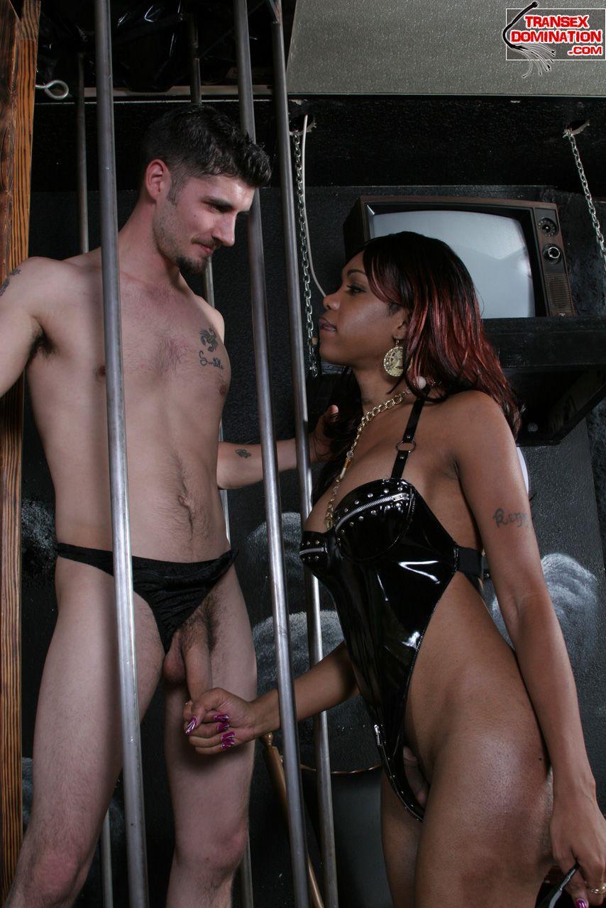black shemale mistress