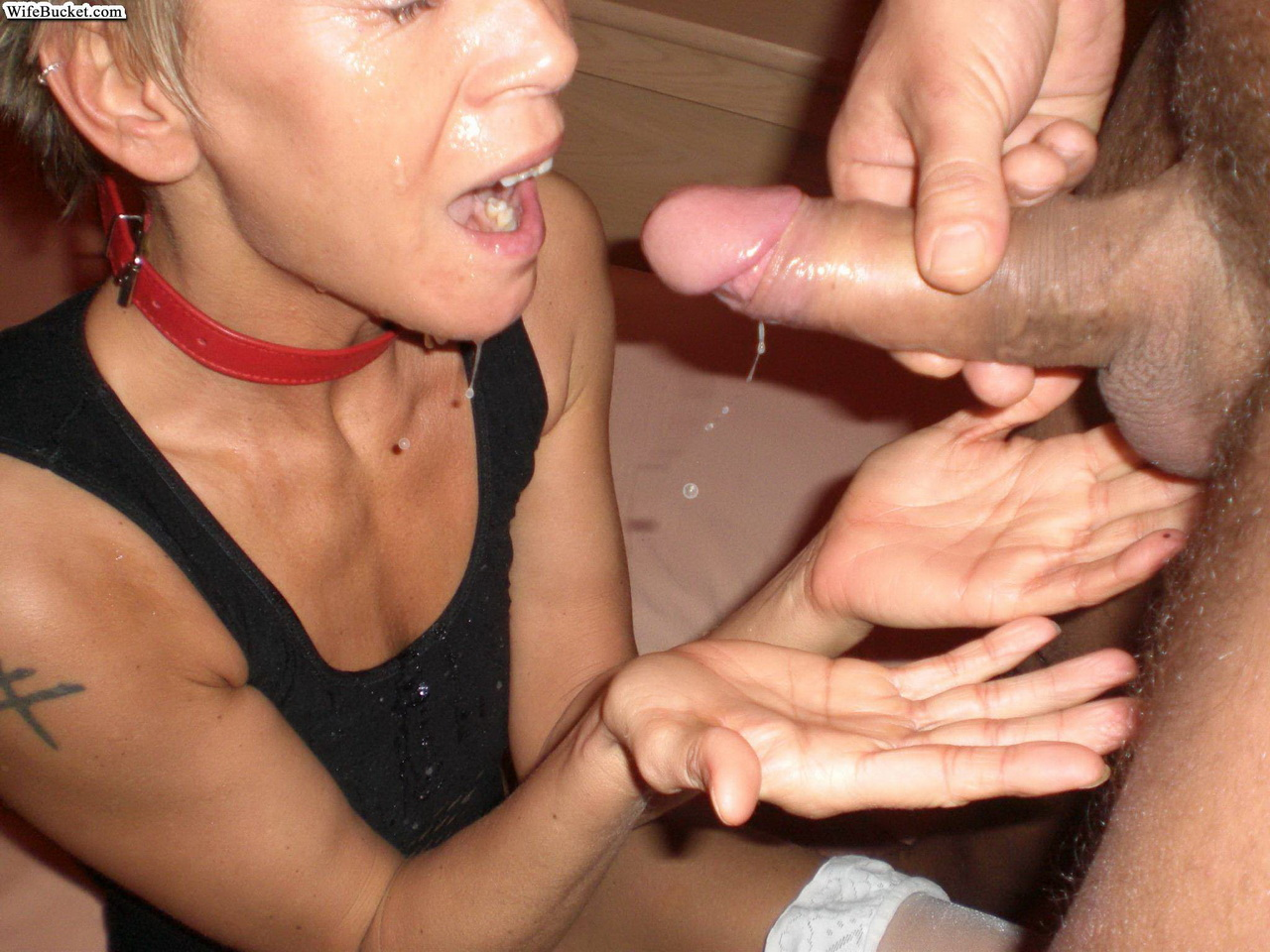 Horny housewife blowjob apologise