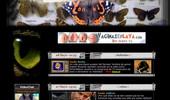 Visit Yonkis.com